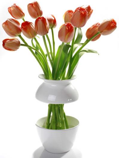 ваза для цветов Pickel & Pampanel
