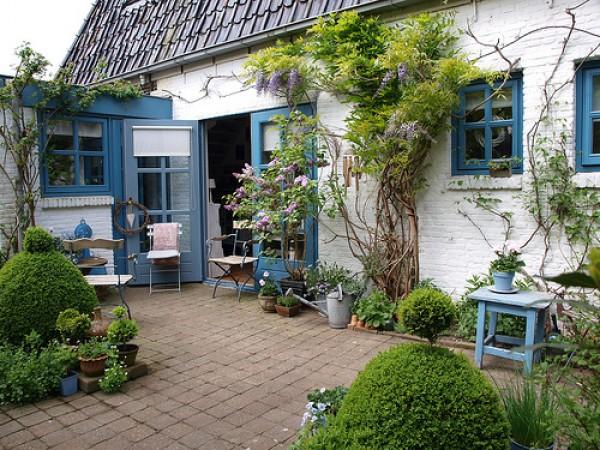 маленький дворик озеленение