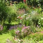 сад в стиле природы