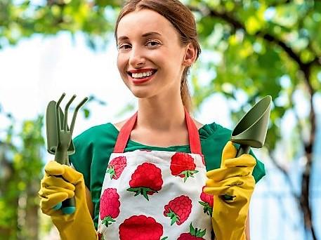 Садоводство для начинающих несколько ответов на важные вопросы.