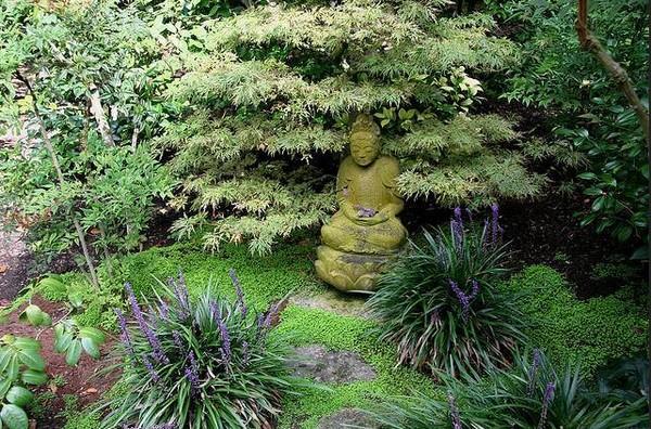 восточный сад на дачном участке