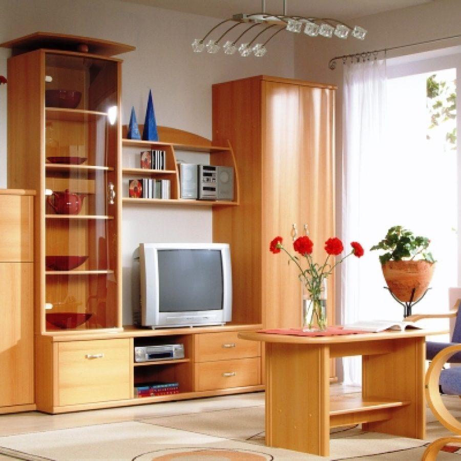 Плюсы и особенности стенок в гостиную