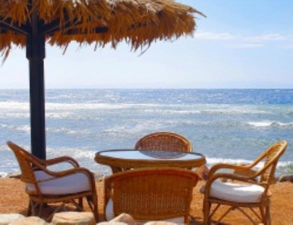 кафе на морском берегу