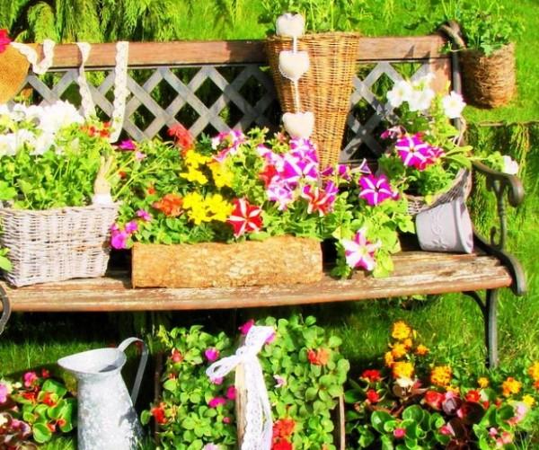 Дом и сад с цветущими растениями