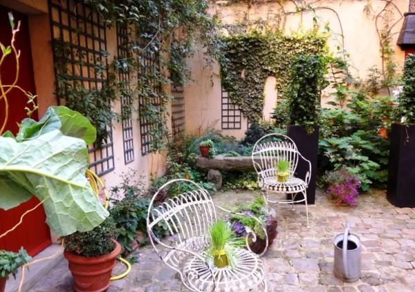 сад, дом, растения, двор