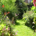оформление участка в саду